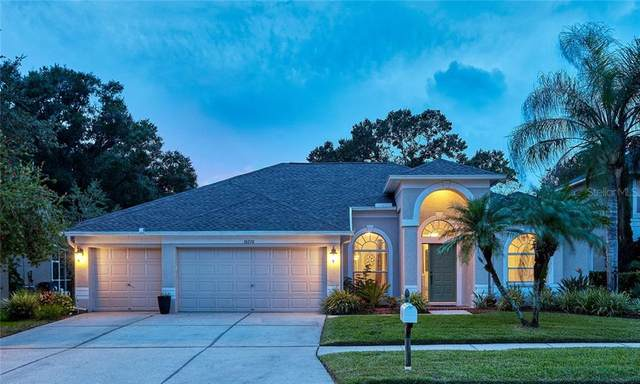 16210 Muirfield Drive, Odessa, FL 33556 (MLS #U8094748) :: The Nathan Bangs Group