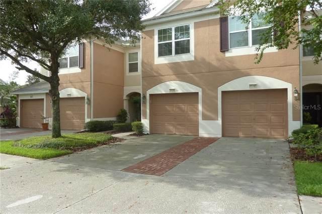26650 Castleview Way, Wesley Chapel, FL 33544 (MLS #U8095321) :: The Figueroa Team
