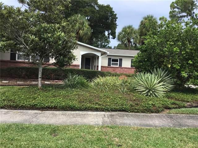 6030 Mornay Drive, Tampa, FL 33615 (MLS #U8095714) :: Team Bohannon Keller Williams, Tampa Properties