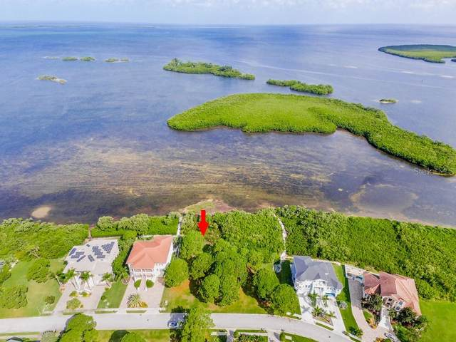2009 Harbour Watch Circle, Tarpon Springs, FL 34689 (MLS #U8095804) :: Lockhart & Walseth Team, Realtors