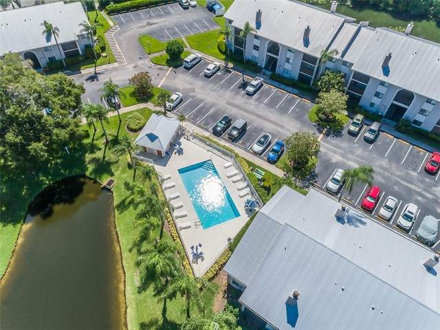 2067 Hunters Glen Drive #339, Dunedin, FL 34698 (MLS #U8095911) :: Cartwright Realty