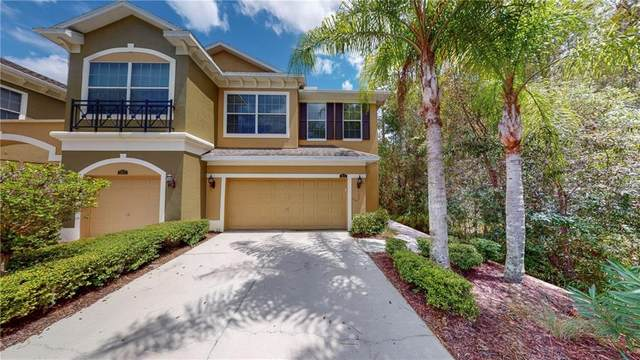12674 Silverdale Street, Tampa, FL 33626 (MLS #U8095934) :: Team Bohannon Keller Williams, Tampa Properties
