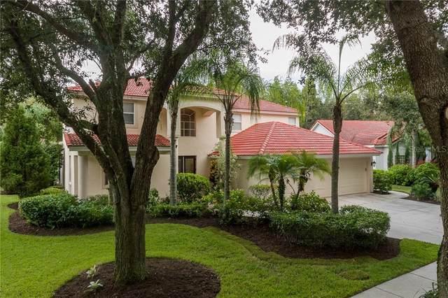10239 Garden Alcove Drive, Tampa, FL 33647 (MLS #U8096117) :: Team Bohannon Keller Williams, Tampa Properties