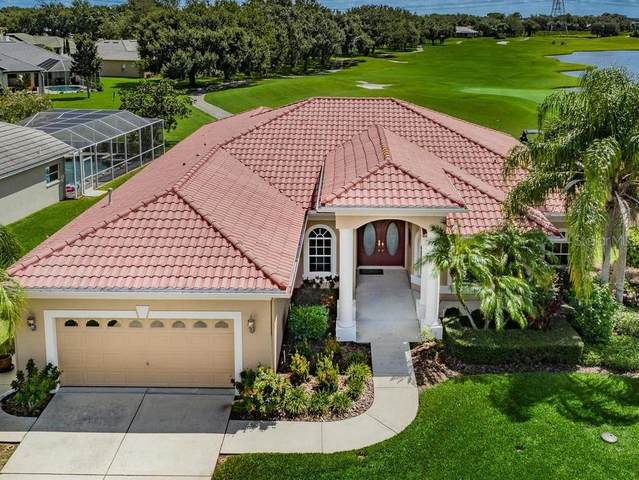 1136 Hagen Drive, Trinity, FL 34655 (MLS #U8096229) :: Griffin Group
