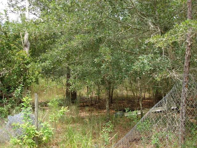 1200 Country Lane, Lutz, FL 33558 (MLS #U8096254) :: Premier Home Experts