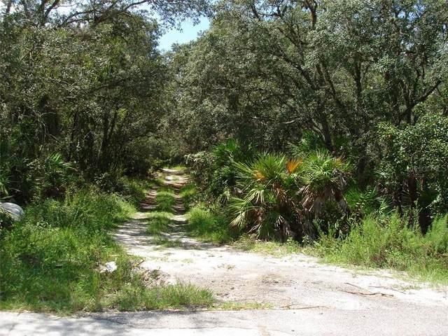 Utica Drive, Hudson, FL 34667 (MLS #U8096274) :: Baird Realty Group