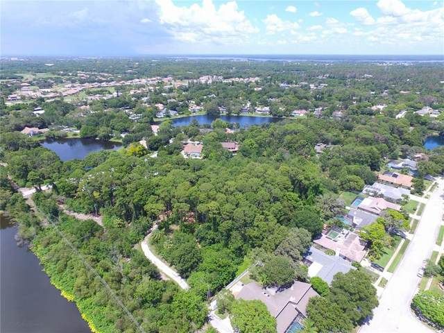 1291 Eniswood Pkwy, Palm Harbor, FL 34683 (MLS #U8096282) :: BuySellLiveFlorida.com