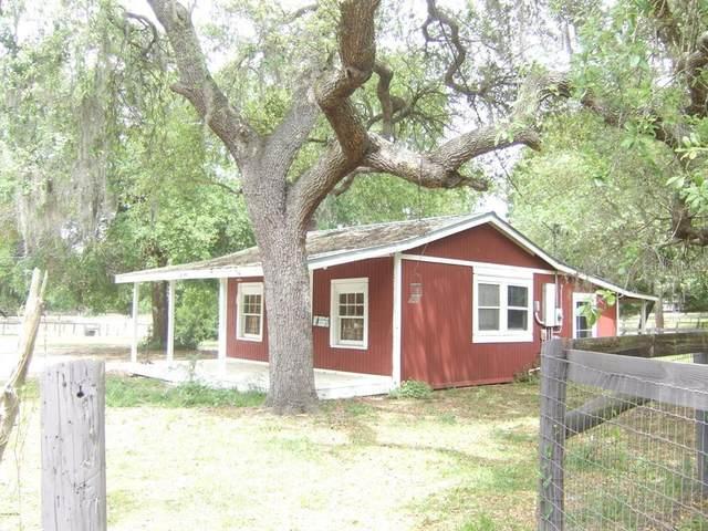 12175 NE 238TH Terrace, Fort Mc Coy, FL 32134 (MLS #U8096495) :: Tuscawilla Realty, Inc