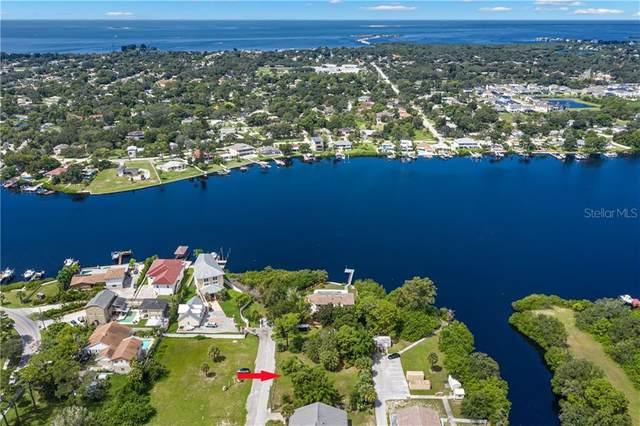 524 Doric Court, Tarpon Springs, FL 34689 (MLS #U8096816) :: Lockhart & Walseth Team, Realtors