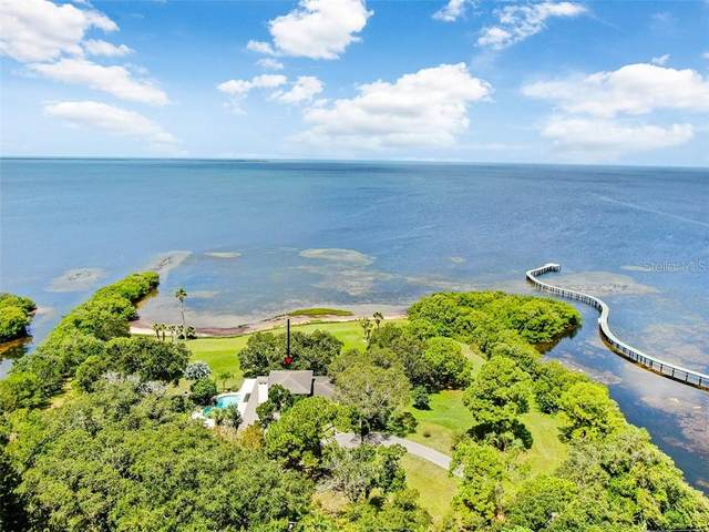 2825 Bluff Boulevard, Holiday, FL 34691 (MLS #U8096929) :: Griffin Group