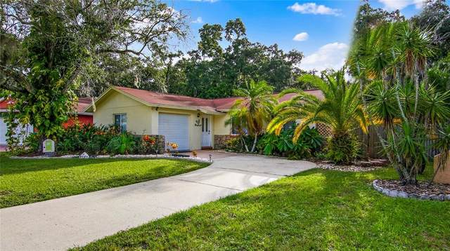 9234 94TH Street, Seminole, FL 33777 (MLS #U8096991) :: Burwell Real Estate