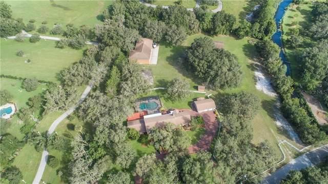 2835 Meadowood Drive, New Port Richey, FL 34655 (MLS #U8097062) :: Team Bohannon Keller Williams, Tampa Properties