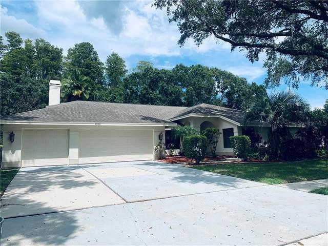 4596 Bardsdale Drive, Palm Harbor, FL 34685 (MLS #U8097122) :: Cartwright Realty