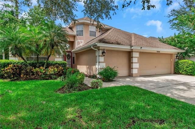 10430 Greenmont Drive, Tampa, FL 33626 (MLS #U8097144) :: The Duncan Duo Team