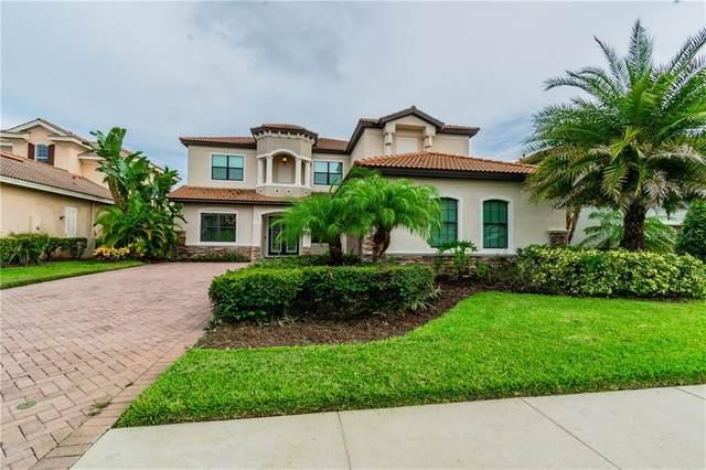 2591 Grand Cypress Boulevard, Palm Harbor, FL 34684 (MLS #U8097150) :: Premier Home Experts