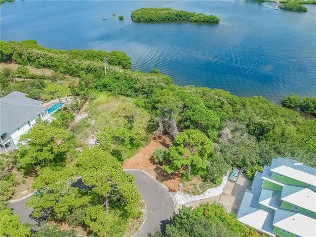 Osprey Court, Palm Harbor, FL 34683 (MLS #U8097225) :: BuySellLiveFlorida.com