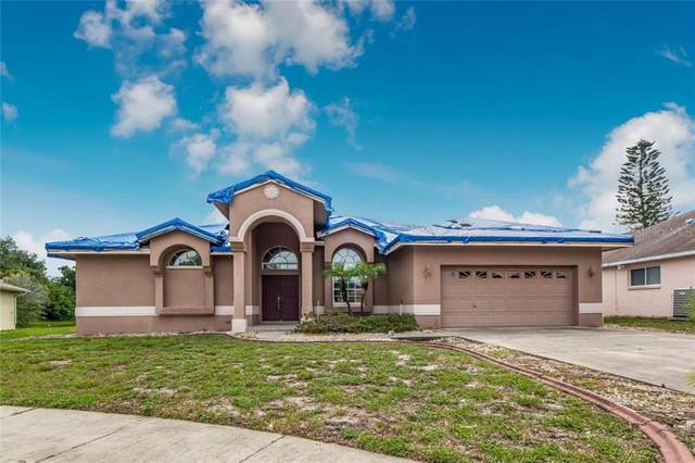 3138 Deergrass Court, Holiday, FL 34691 (MLS #U8097236) :: Griffin Group