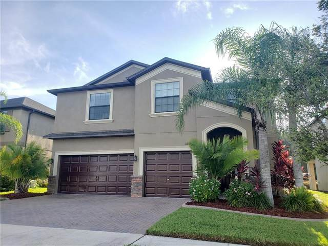 11737 Crestridge Loop, Trinity, FL 34655 (MLS #U8097283) :: Premier Home Experts