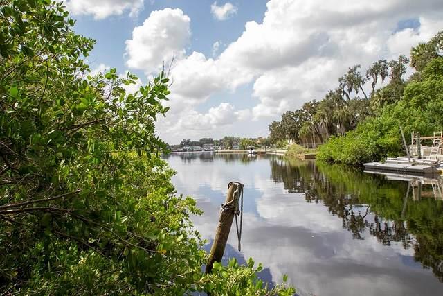 7752 Weber Lane, Port Richey, FL 34668 (MLS #U8097315) :: Griffin Group