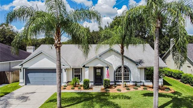 5421 Pine Bay Drive, Tampa, FL 33625 (MLS #U8097367) :: Team Bohannon Keller Williams, Tampa Properties