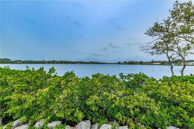 803 Whitcomb Boulevard, Tarpon Springs, FL 34689 (MLS #U8097581) :: Bustamante Real Estate