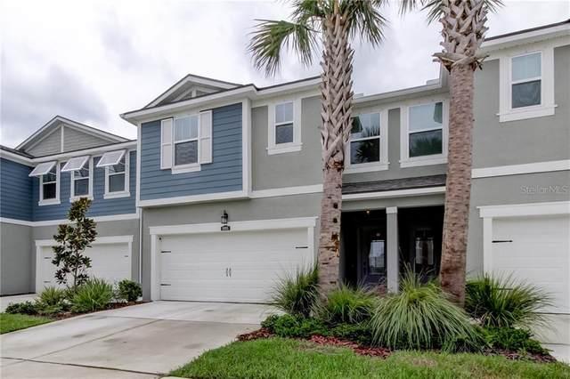 8005 Palm Key Avenue, Oldsmar, FL 34677 (MLS #U8097790) :: RE/MAX Premier Properties