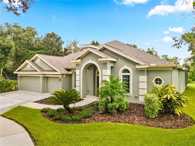 15242 Kestrelrise Drive, Lithia, FL 33547 (MLS #U8097946) :: Mark and Joni Coulter | Better Homes and Gardens