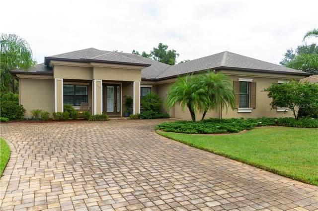 1321 Ketzal Drive, Trinity, FL 34655 (MLS #U8098006) :: Gate Arty & the Group - Keller Williams Realty Smart