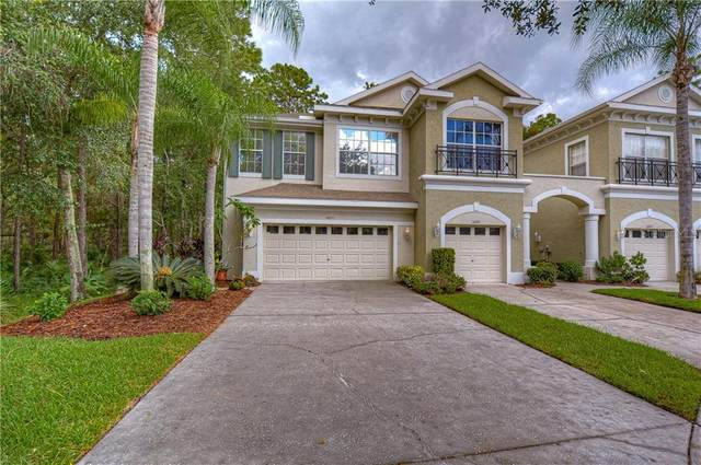 14251 Waterville Circle, Tampa, FL 33626 (MLS #U8098105) :: Cartwright Realty