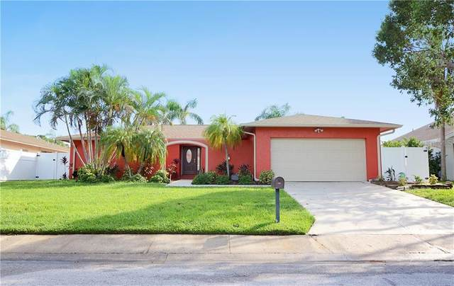 8141 Bayhaven Drive, Seminole, FL 33776 (MLS #U8098156) :: Team Bohannon Keller Williams, Tampa Properties