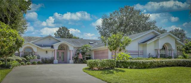 Address Not Published, Palm Harbor, FL 34683 (MLS #U8098177) :: Rabell Realty Group