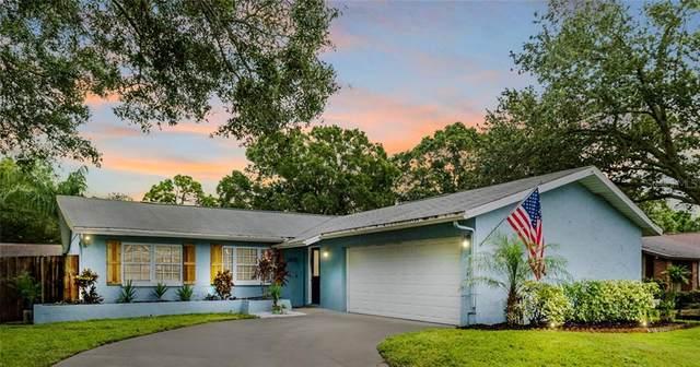 6635 Pinecrest Lane N, Pinellas Park, FL 33781 (MLS #U8098187) :: CENTURY 21 OneBlue