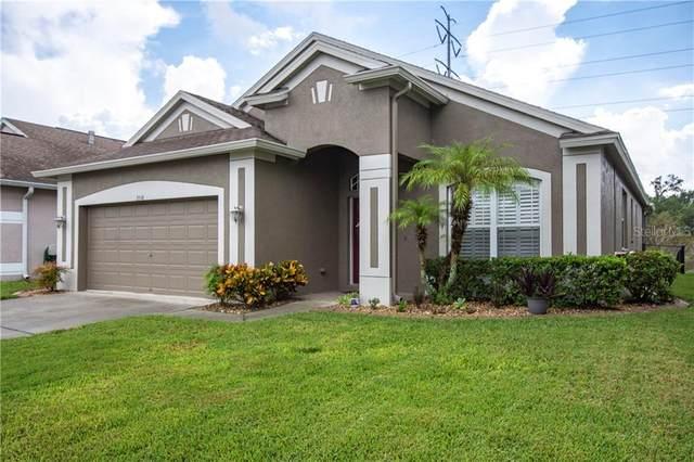 2516 Palesta Dr, New Port Richey, FL 34655 (MLS #U8098289) :: Gate Arty & the Group - Keller Williams Realty Smart