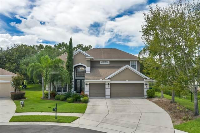 23300 Dinhurst Court, Land O Lakes, FL 34639 (MLS #U8098303) :: The Heidi Schrock Team