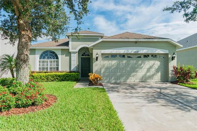 30547 Casewell Place, Wesley Chapel, FL 33545 (MLS #U8098324) :: Carmena and Associates Realty Group
