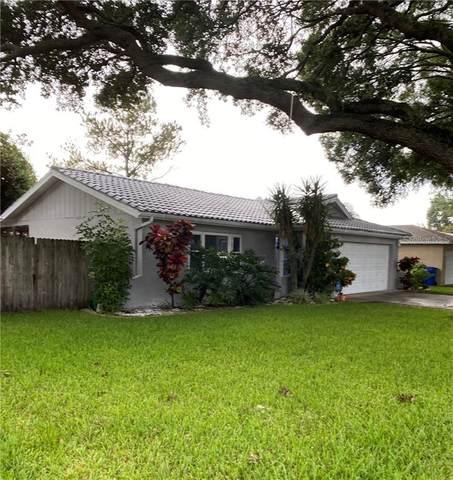 1290 Dinnerbell Lane E, Dunedin, FL 34698 (MLS #U8098338) :: Keller Williams on the Water/Sarasota