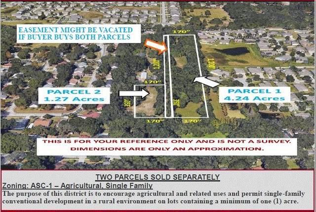 Sydney Road, Valrico, FL 33594 (MLS #U8098371) :: Rabell Realty Group