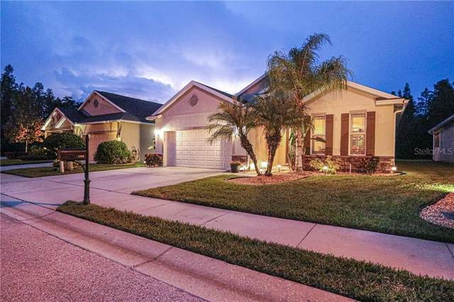 1434 Halapa Way, Trinity, FL 34655 (MLS #U8098374) :: Team Bohannon Keller Williams, Tampa Properties