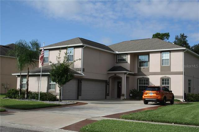 13944 Bee Tree Court, Hudson, FL 34669 (MLS #U8098489) :: Cartwright Realty