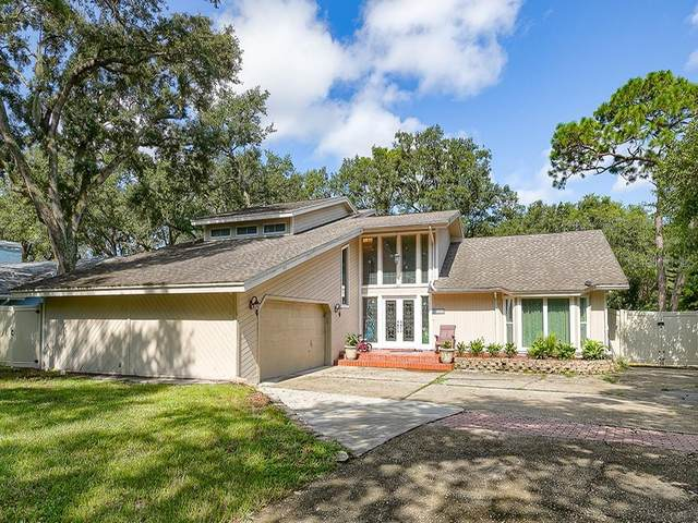 70 Bay Woods Drive, Safety Harbor, FL 34695 (MLS #U8098493) :: Team Borham at Keller Williams Realty