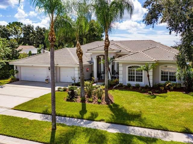 3876 Brooksworth Avenue, Tarpon Springs, FL 34688 (MLS #U8098521) :: Griffin Group