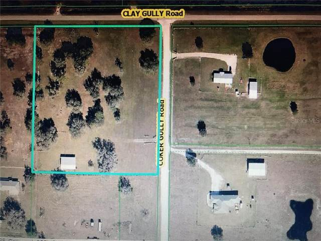14710 Coker Gully Road, Myakka City, FL 34251 (MLS #U8098546) :: GO Realty