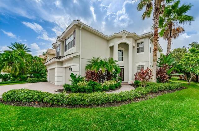 2302 Messenger Circle, Safety Harbor, FL 34695 (MLS #U8098595) :: Team Borham at Keller Williams Realty