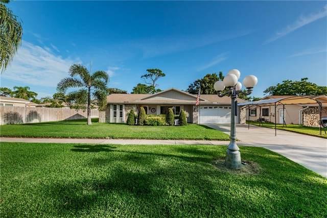 1504 Oleander Drive, Tarpon Springs, FL 34689 (MLS #U8098653) :: Armel Real Estate