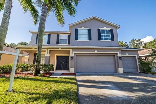 8914 N River Road, Tampa, FL 33635 (MLS #U8098742) :: Team Bohannon Keller Williams, Tampa Properties