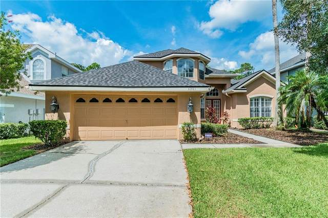 11703 Gothic Lane, Tampa, FL 33626 (MLS #U8098745) :: Cartwright Realty