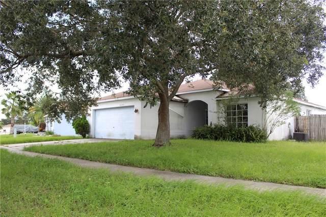 12129 Buffington Lane, Riverview, FL 33579 (MLS #U8098750) :: Dalton Wade Real Estate Group