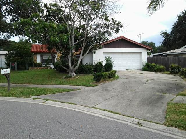 1011 Vineyard Court, Dunedin, FL 34698 (MLS #U8098779) :: Burwell Real Estate