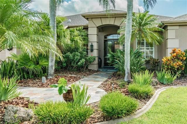 3919 Ambassador Drive, Palm Harbor, FL 34685 (MLS #U8098781) :: Lockhart & Walseth Team, Realtors