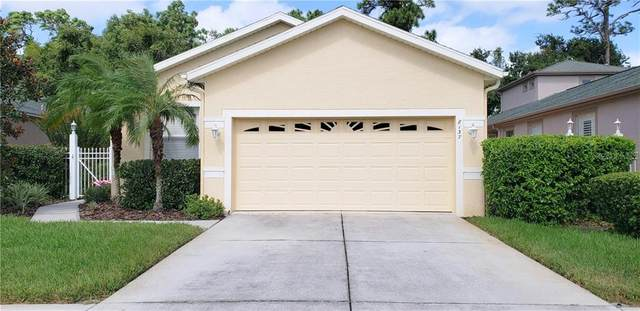 Address Not Published, Land O Lakes, FL 34637 (MLS #U8098830) :: Rabell Realty Group